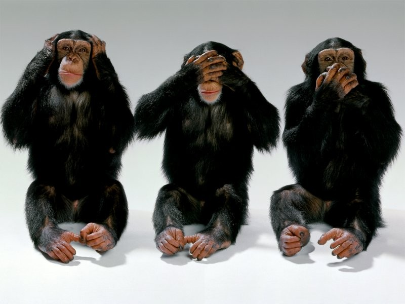 FIFA - See No Evil Monkeys-hear-no-evil-see-no-evil-speak-no-evil