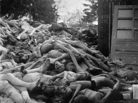 Nazi germany sex camps