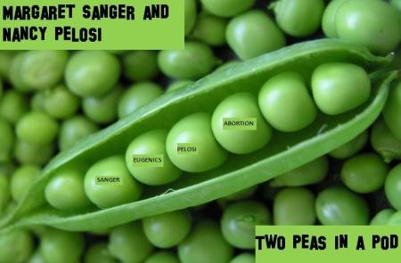 Pelosi Sanger 2 Peas ina Pod