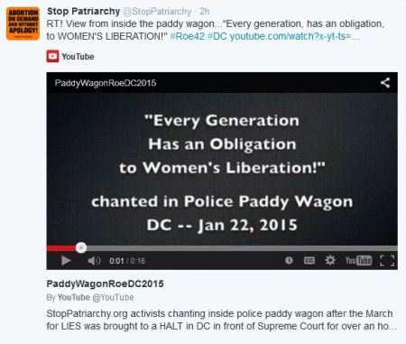 Stop Patriatchy Paddy Waggon