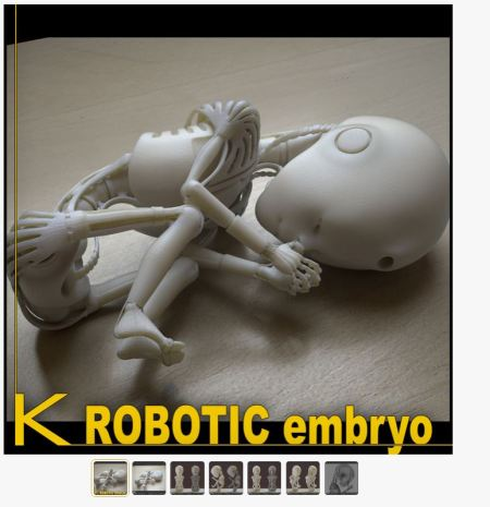 KRobotic Embryo