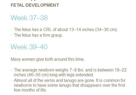 PP Fetal develop 37 to 40 weeks