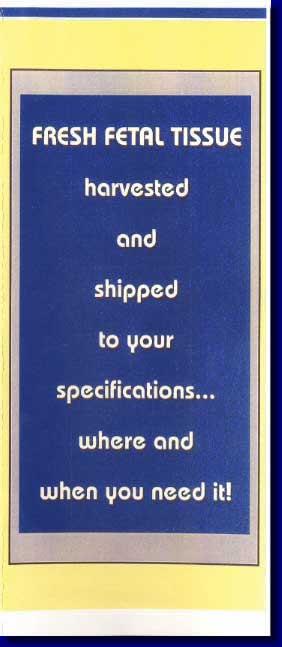 2-01-Harvest-Brochure-Cover